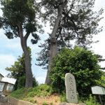 30 Suenomatsuyama hill