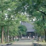 11 陸奥国分寺薬師堂