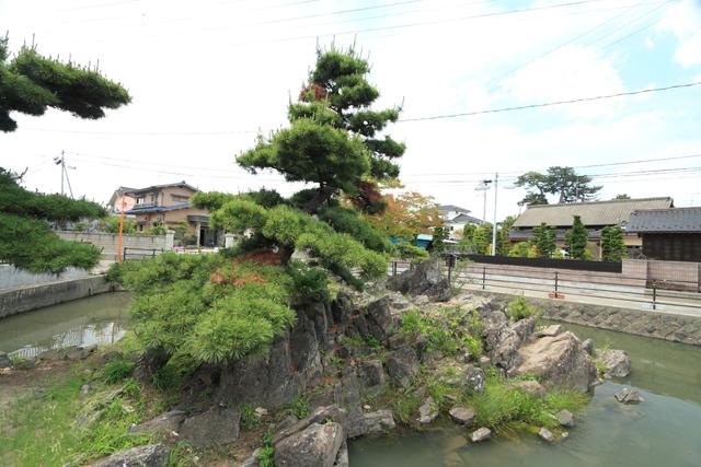 31 興井